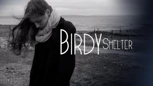 birdy_shelter